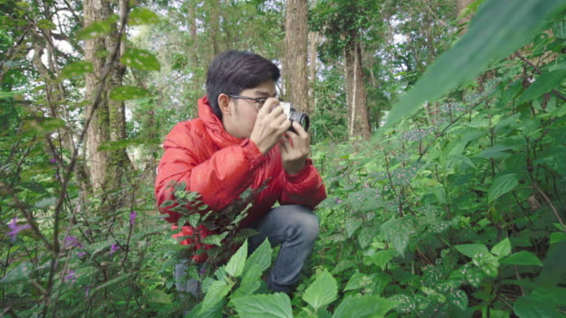 Man Photographing Flower in the Forest