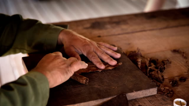 Man processing tobacco leaves and making cigars , Cuba