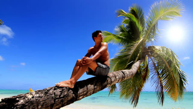 Man relaxing in a Palm tree