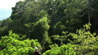 Man riding a zipline through the rainforest