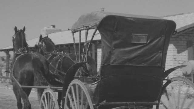 MS PAN Man riding horse carriage