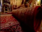 Man rolls up Persian carpet in market Shiraz