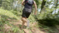 TS Man running through the forest on a sunny day