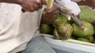 MS TU Man selling sugarcane  / Brightown, Barbados