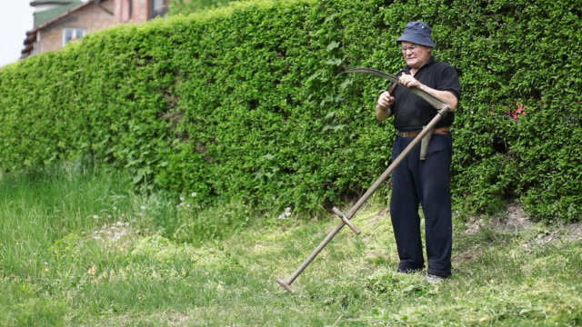 Man sharpens the blade of scythe preparing to mow grass