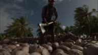 Man splits coconuts with axe, French Polynesia