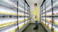 WS TD Man standing in beer sample store in Warsteiner AG / Warstein, North Rhine Westphalia, Germany