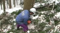 A man starts chain-sawing: Medium shot