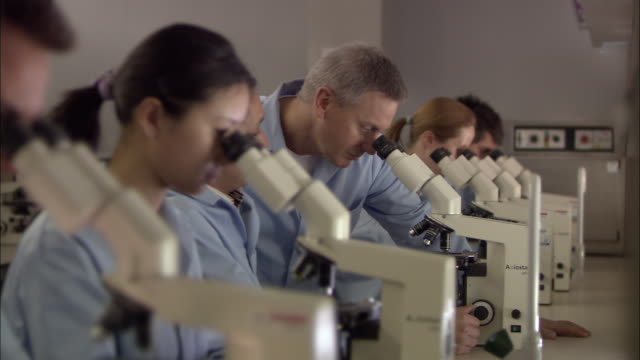 CU, PAN, SELECTIVE FOCUS, Man supervising team looking through microscopes in laboratory, London, England