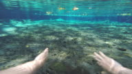 Man swimming underwater natural pool POV