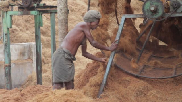 Man throws coconut fibers into a husking machine / Muttom India