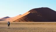 Man under Highest Sand dune in Namibia.