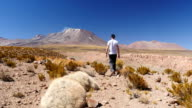 A man walking in the desert in front of a volcano