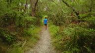 Man walking in the forest, at Huskisson, Jervis Bay, Australia.