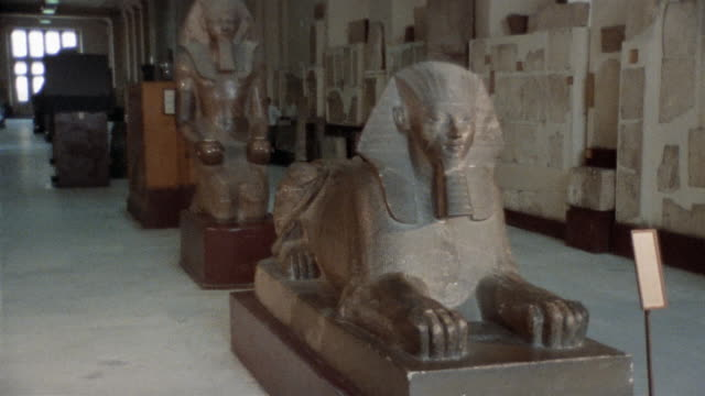 WS ZI MS Man walking past Sphinx statue in Egyptian Museum / Cairo, Egypt