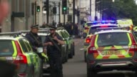 Man who crashed car into pedestrians outside Natural History Museum released by police Police vehicles and armed officers at scene Paramedics...