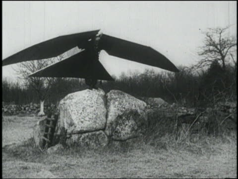 B/W man with large wings + tail on back jumps from rock + falls on ground