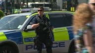 Police investigate terror network London Buckingham Palace General view armed police officer Westminster Long shot armed soliders and armed police...
