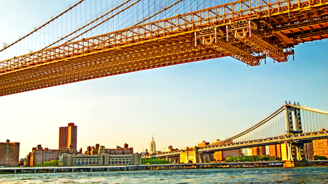 Manhattan and Brooklyn bridges.