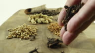 Man's hand keeps cloves on a wooden board with a bunch of whole (sabut) Indian masalas or spices