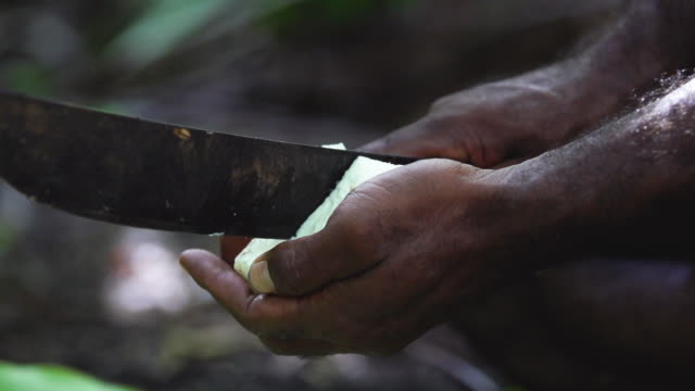 Man's hands cuts coconut meat with machete, high speed