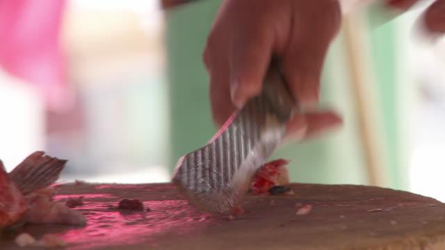 CU Man's hands filleting catfish at market / Cuernavaca, Morelos, Mexico