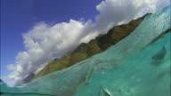 SLO MO CU CANTED Manta ray (Manta birostris) swimming at ocean surface / Moorea, Tahiti, French Polynesia