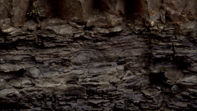 Many layers make up a rock face in the mountains of Italy. Available in HD.