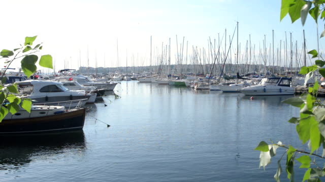 Marina view on sunny day in Istanbul II