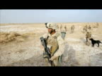 US Marines patrolled the outskirts of Marjah in Helmand province on Tuesday with the help of corporals Goodwin and Brooks Labrador dogs whose job is...