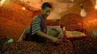 Market trader packing nuts into bag, Morocco Available in HD.