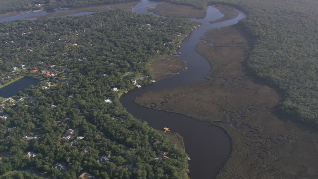 AERIAL WS Marsh land / Florida, United States
