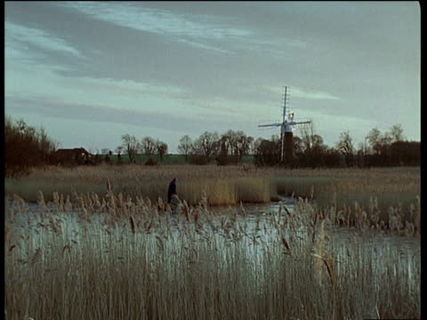 Marshland with windmill in background man with scythe cutting reeds