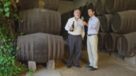 mature and middle-aged man standing in front of stacks of wooden wine casks; mature man pours wine into glass held by younger man who lifts it to the light and examines the wine; brief conversation