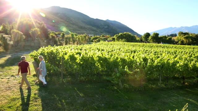 Mature couple explore mountain vineyard