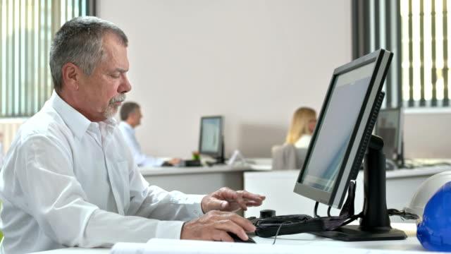 DS MS Mature ingegnere lavorando su un Computer