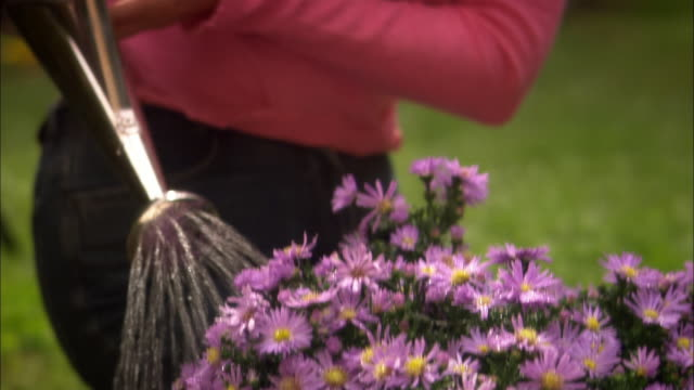 Mature woman watering flowers with watering can