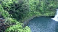 Maui Waterfall 03