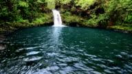Maui Waterfall 2