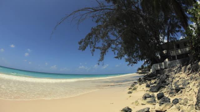 WS FISH EYE Maxwell beach / Oistins, Christ Church, Barbados