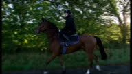 McCoy training and interview TRACKING SHOT of AP McCoy riding horse along and jumping over fences during training session / McCoy dismounting horse /...