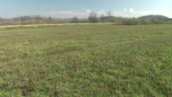 HD: Meadow
