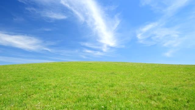 Meadow with white blue sky in spring, Allgau, Bavaria, Germany