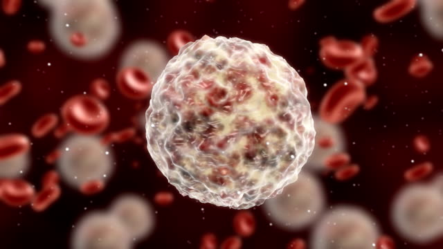 Medical Cell animation
