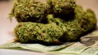 Medicina di erbe naturale settore sanitario legalizzazione rimedio denaro cresce su alberi 20 Dollar Bill valuta salute legalizzazione ricreative Cannabis tasse