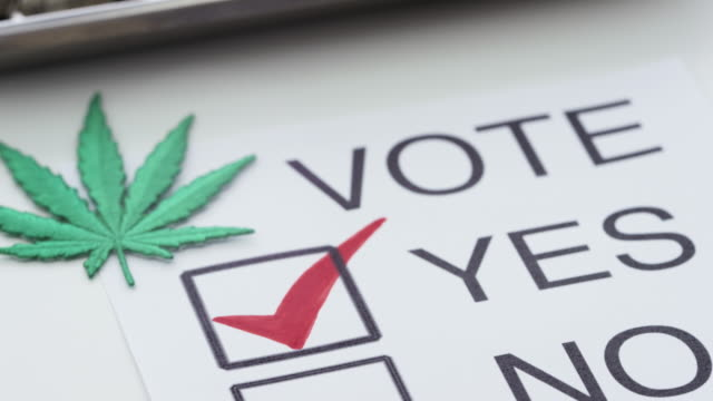 Medizinisches Marihuana Legalisierung Amerika