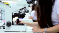 Medical students using a microscope to see bacteria,Close-up