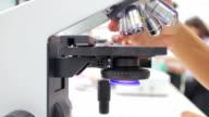 Gli studenti di medicina con un microscopio per individuare i batteri, primo piano