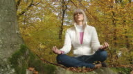 HD DOLLY: Meditating In Nature