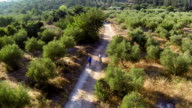 Mediterranean cycling   REC